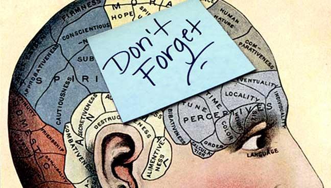 Marijuana Could Improve Your Memory